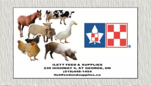 Ilett Feeds Logo
