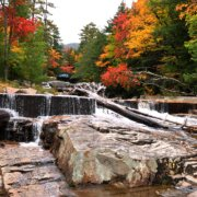 Fall Colours along a rocky river bed