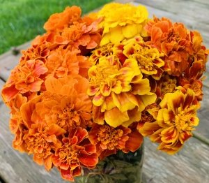 A bouquet of yellow and orange flowers
