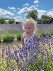 A young girl in a lavender field