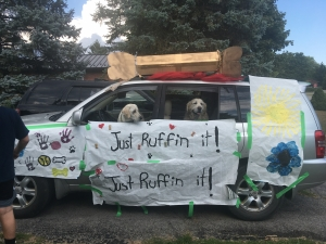 Two dogs in a decorated van with a bone on the top